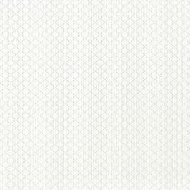 """Виниловые Обои Andrea Rossi (Андреа Росси) Обои Andrea Rossi коллекция """"Burano"""", арт.  2524-2"""