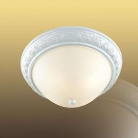 Настенно-потолочный светильник 4306 COLT, Sonex